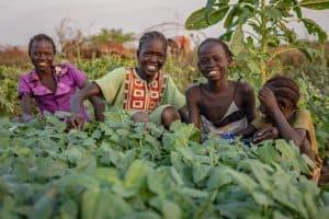 South Sudan FSL (1)